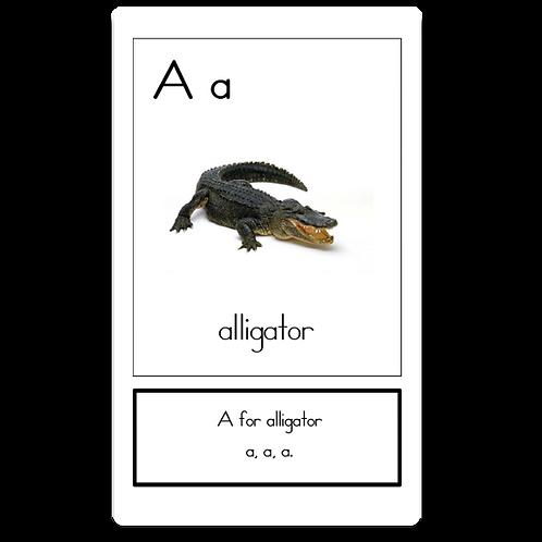 Alphabet Flip Cards