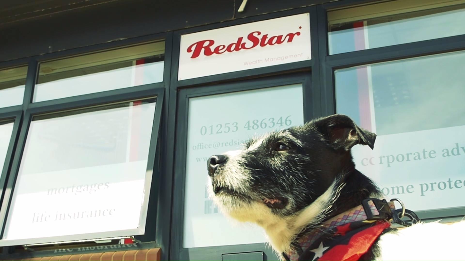 Red Star Wealth Management - Bodge