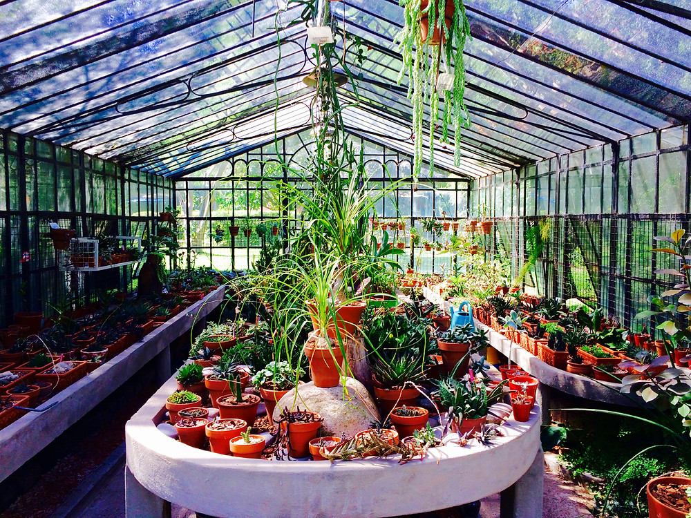 Greenhouse, Carlos Thays Botanical Garden