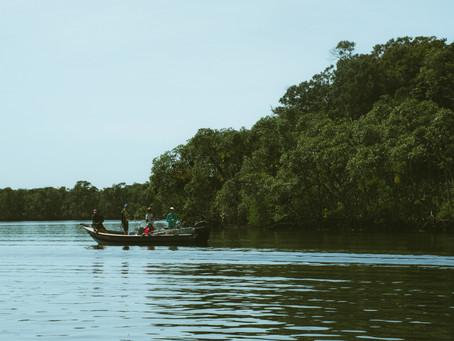 Turismo Sustentável: o que é + 8 dicas para praticar!