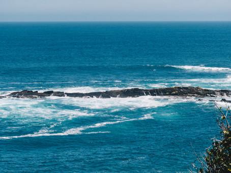 6 curiosidades sobre a África do Sul!