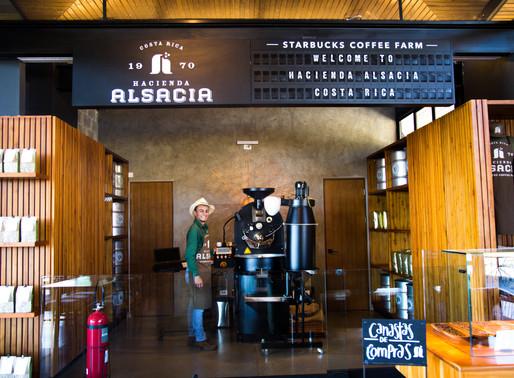 Starbucks Coffee Farm in Costa Rica