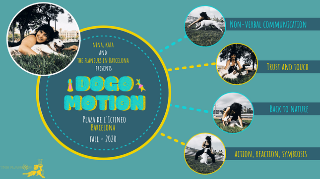 dogomotionfbcover (1).png