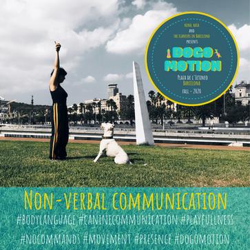 nonverbalcommunication (1).png