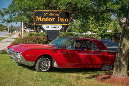Red T-Bird on the Lawn