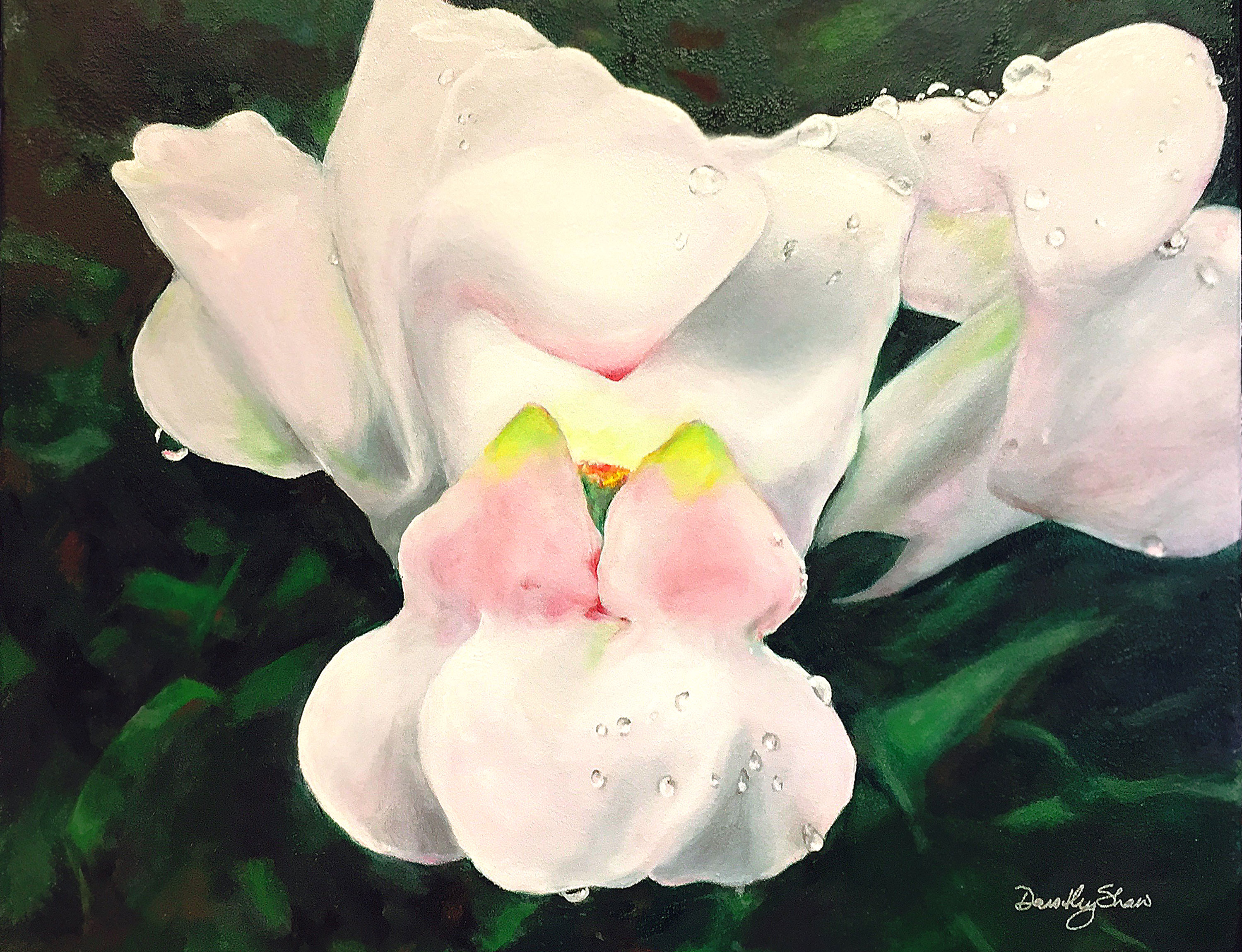 Snap Dragon, Oil Painting