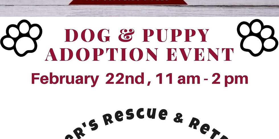 Dog and Puppy Adoption Event