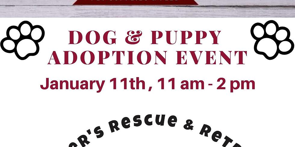 Dog & Puppy Adoption Event