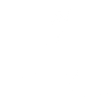 Site Quick Soccer