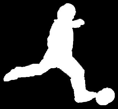 lgoo foot pour affiche futsal.png