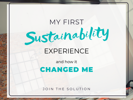 My First Sustainability Experience and How it Changed Me