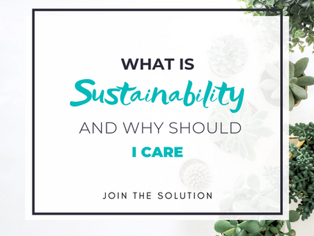 What is Sustainability