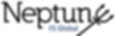 Neptune FS Logo.png