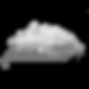 swr_website_cloud.png