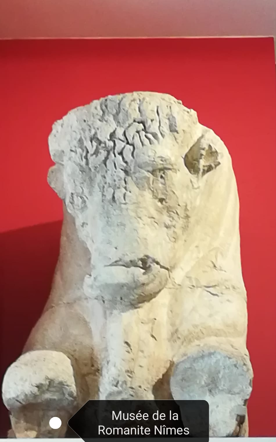 Musée de Nîmes