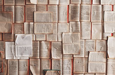 Open law books
