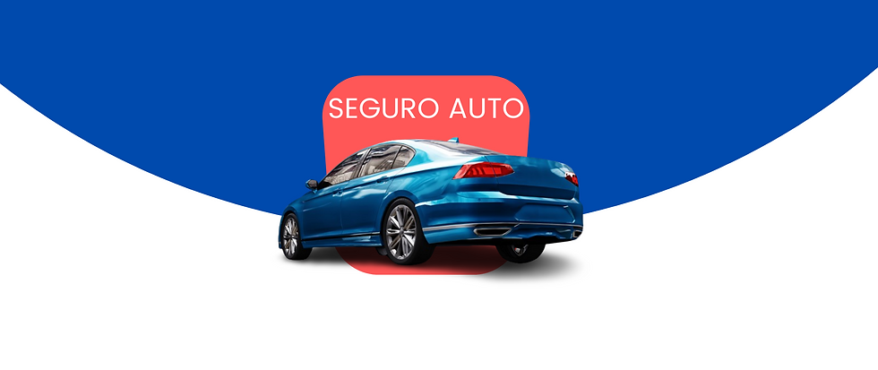 Seguro Auto (3).png
