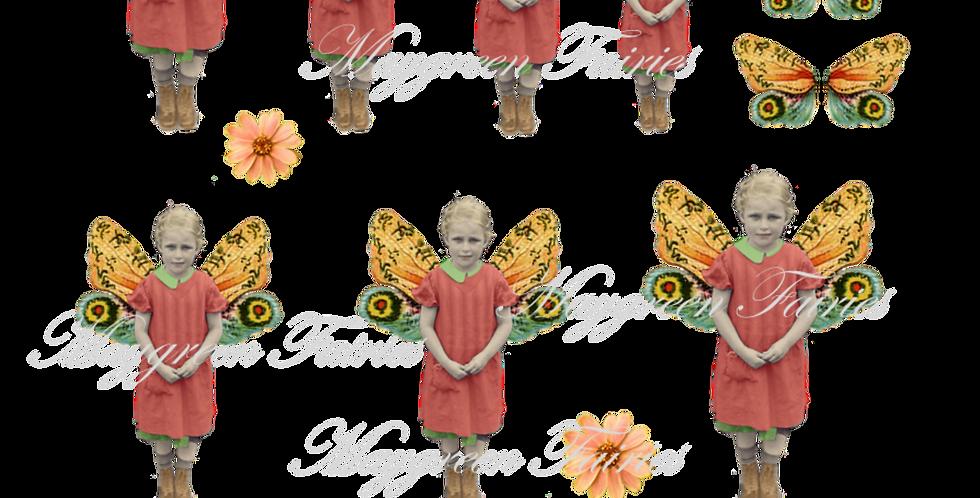 """Maygreen Fairy """"Iris"""""""