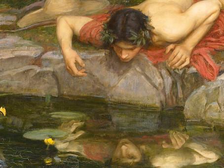 Fragrant Narcissus