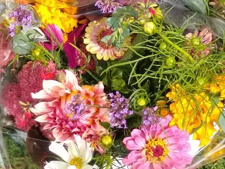 My Flower Journey