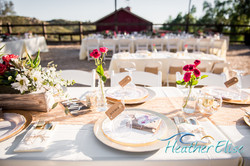 Bradford Ranch Wedding (522 of 819)-L