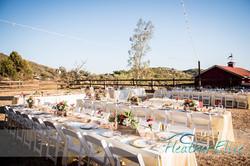 Bradford Ranch Wedding (525 of 819)-L