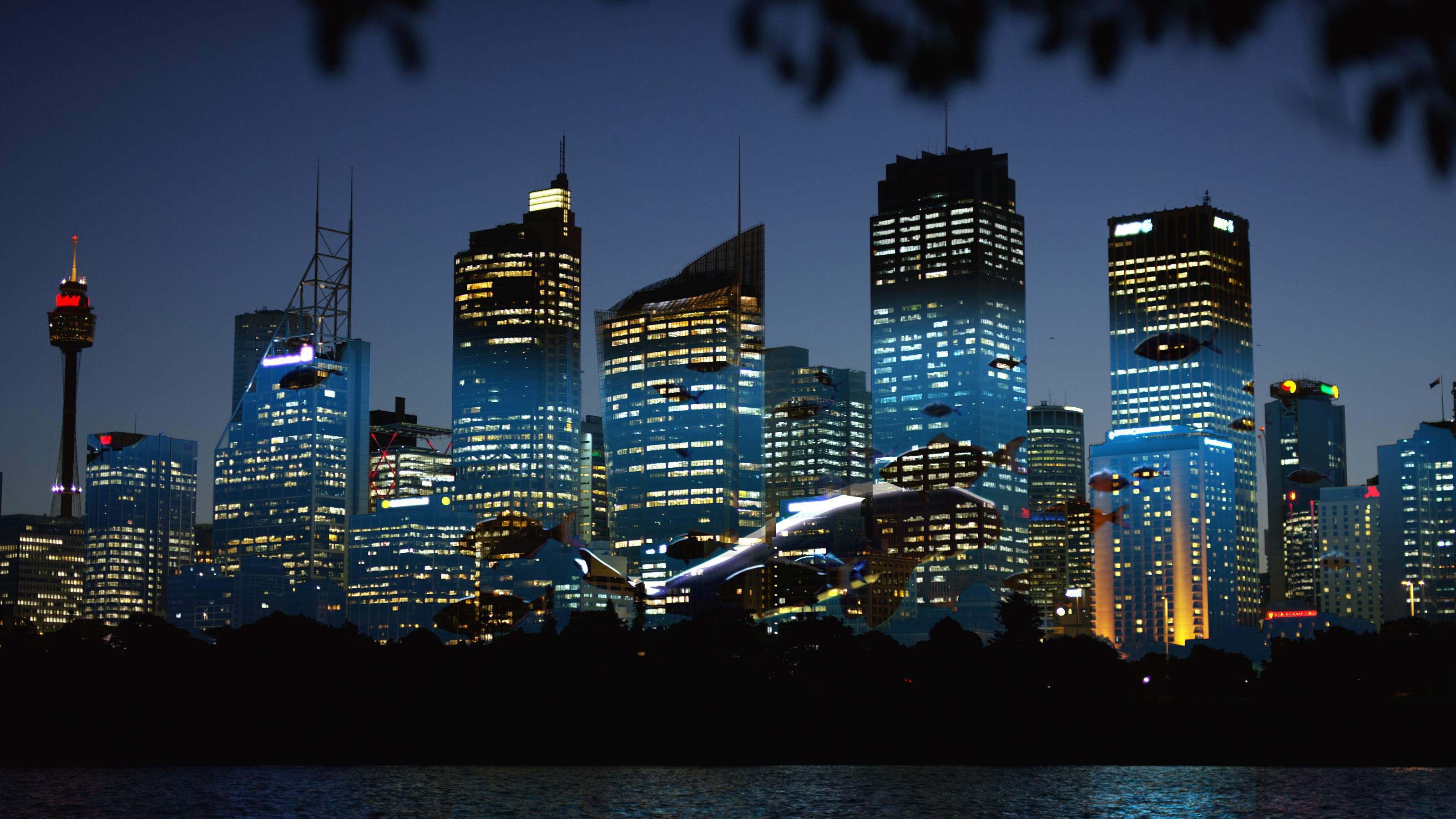 SYD_Theme_LED_landscape_001 (02699)