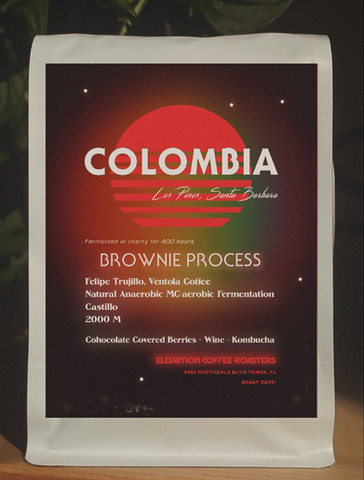 Colombia Natural (Brownie Process)