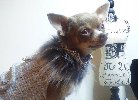 """BLUE"" Coco Paw Chanel"