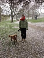 Ally's Snowy walk!