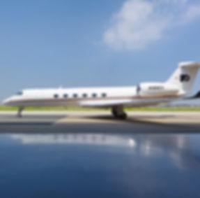 Flyers Plane_2 cropped.jpg
