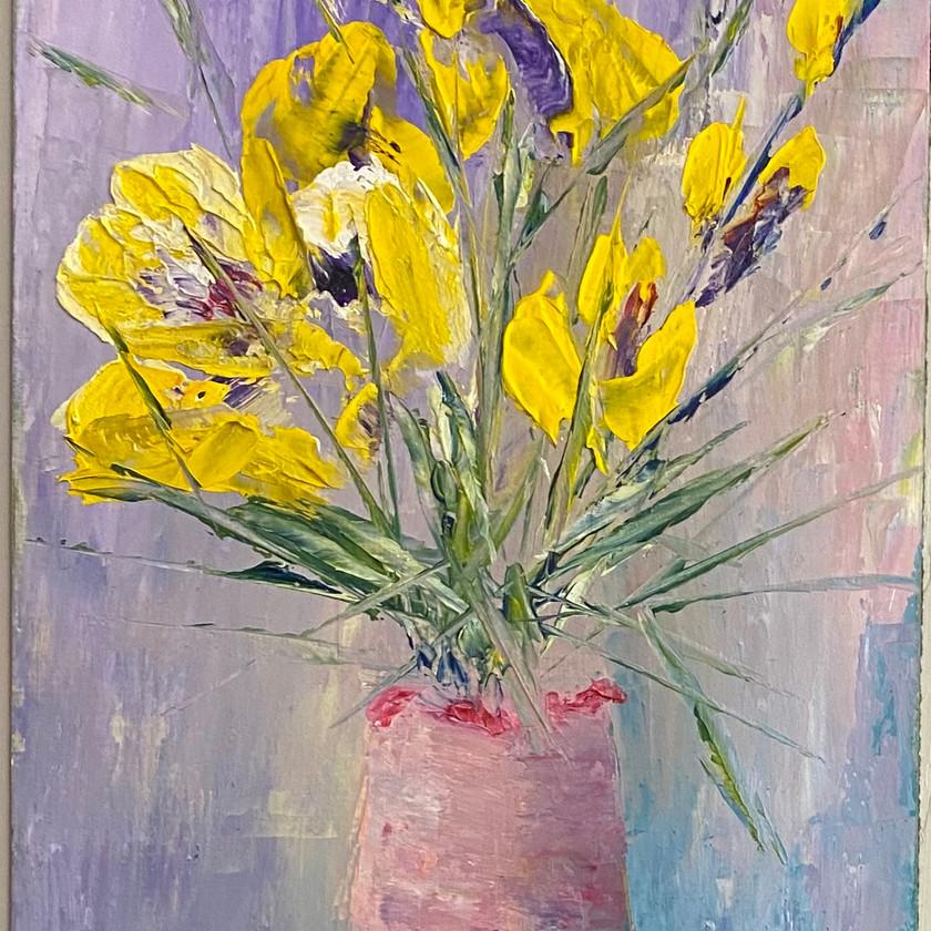 Iris gialli