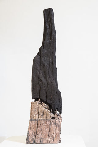 'Unpredictable' Brionwood Tower (2017).j