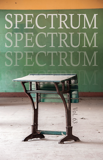 Spectrum Vol. 63 Covers v. 2.png