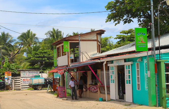 The Monkey Who Should Be in the Major Leagues: My Experiences Teaching English in Sámara, Costa Rica