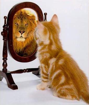 Renforcer la confiance en soi
