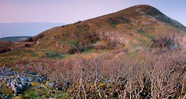 cliffs of cuilcagh.jpg