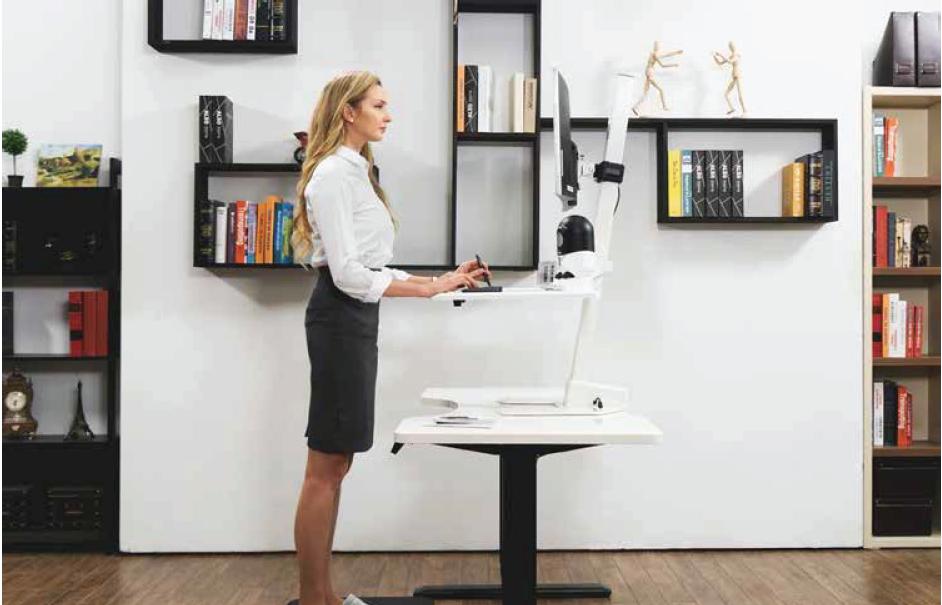 Sit Stand Desk in Home Office, Interior Design.