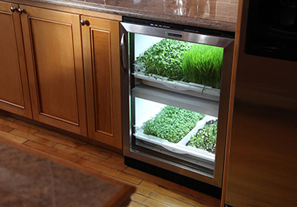 Photo of Urban Cultivator Kitchen Appliance