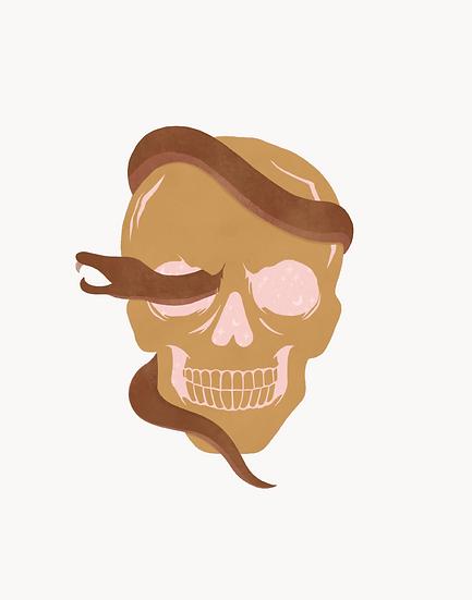 starry skull