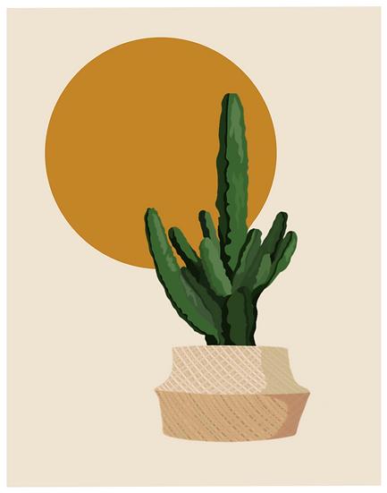 minimalist plant set