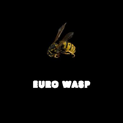 EuroWasp.png
