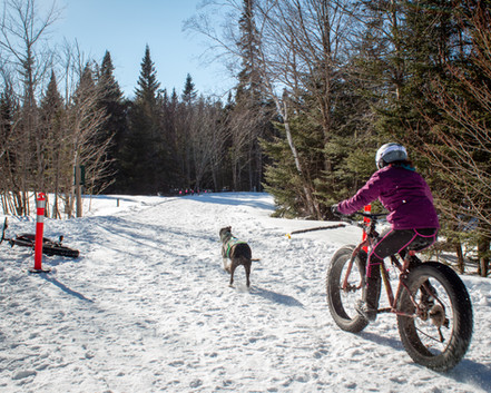 Try-a-trail Fatbikejoring