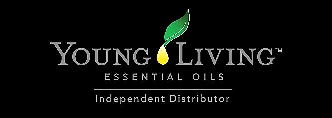 YL logo