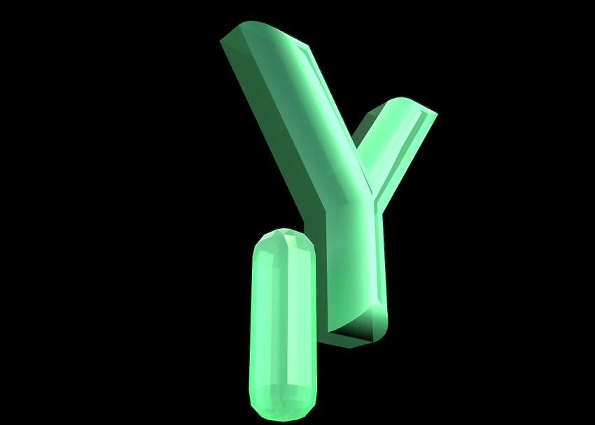 Y 3D-snapshot.png