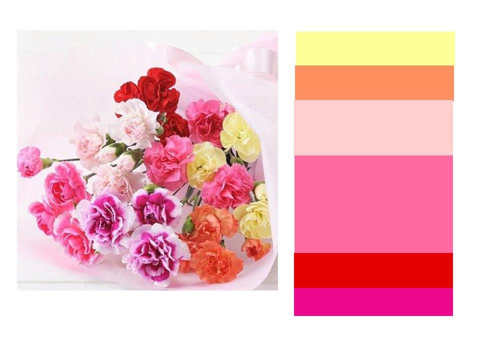花束の色面構成2013.5.8.jpg