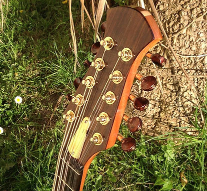 10-string-mando-01.jpg