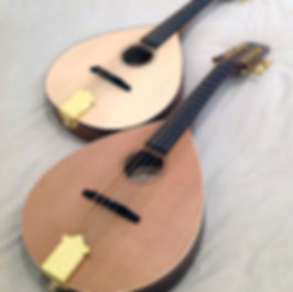 celtic spirit mandolins