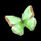 Aquarelle Papillon 2