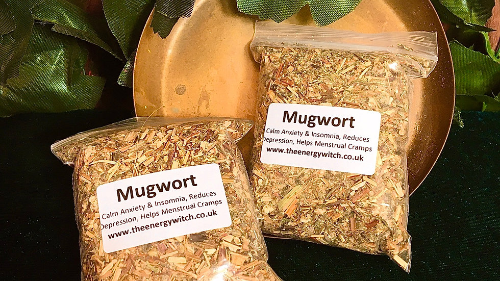 Mugwort - Various Sizes Available
